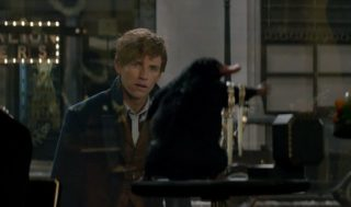 Movies Under the Stars: Fantastic Beasts and Where to Find Them