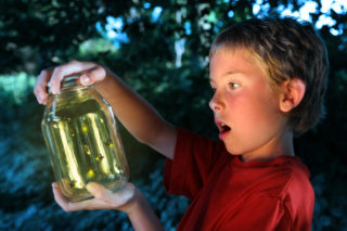 Fort Tryon Kids: Firefly Pajama Party