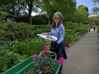 Heather Garden Tour with Public Garden Designer Ronda M. Brands
