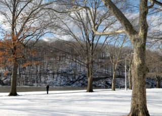 Inwood Hill Park Winter Walk with Expert Naturalist Mike Feller