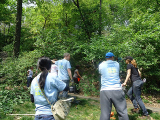 New York Cares Beautification Day